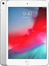 iPad mini 5 (2019)  256GB 4G